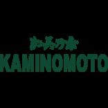 Kaminomoto - specjalistyczne kuracje do włosów